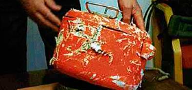 Только один черный ящик найден после крушения МиГ-31 под Пермью