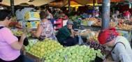 Депутат Госдумы требует запретить продукты из Украины, Молдавии и Грузии