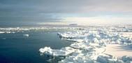 Представители Greenpeace предлагают России отказаться от добычи нефти в Арктике