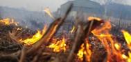 Правительство ввело запрет на выжигание сухой растительности